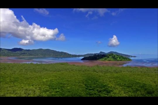 Mangrove de Chirongui et baie de Boueni