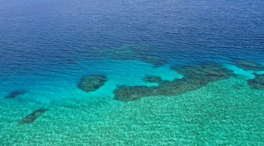 Récif Rani - Sud