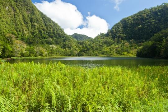 GLB0168 Anjouan Lac Dzialandzé