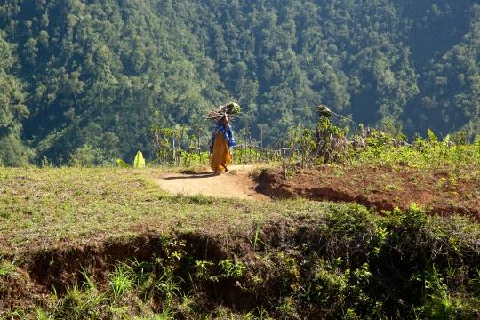 GLB0176 Anjouan femmes corvée de bois