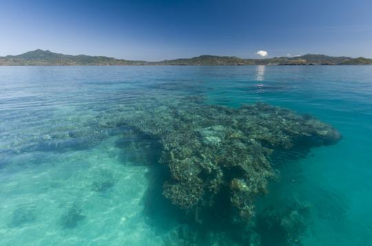 NH-Mayotte-20120812-1880