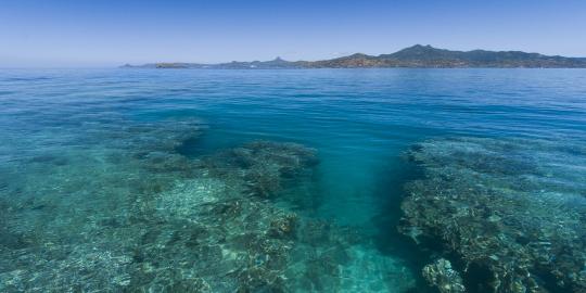 NH-Mayotte-20120812-1883