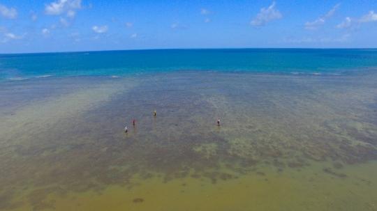 Platier de M\'Bouanatsa pendant la marée basse