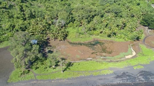 Zone de marais de Moutsamoudou